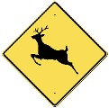 Deer Warnig Sign