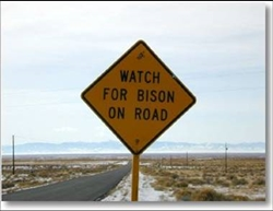 BisonRoadSign3Colorado.jpg